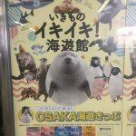 大阪海遊館へ行くとき絶対使った方が良いお得なチケット情報☆