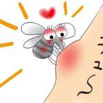 蚊に刺されたときのパーフェクトな薬